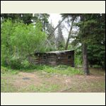 """""""Nine Mile Bert"""", an alcoholic, used to live here.  They found him dead in his cabin one spring."""