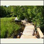 walkway to the brook