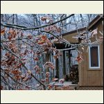 winter ice at cabin