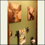 bathroom cabin pics