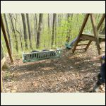 Bum finds bench swing