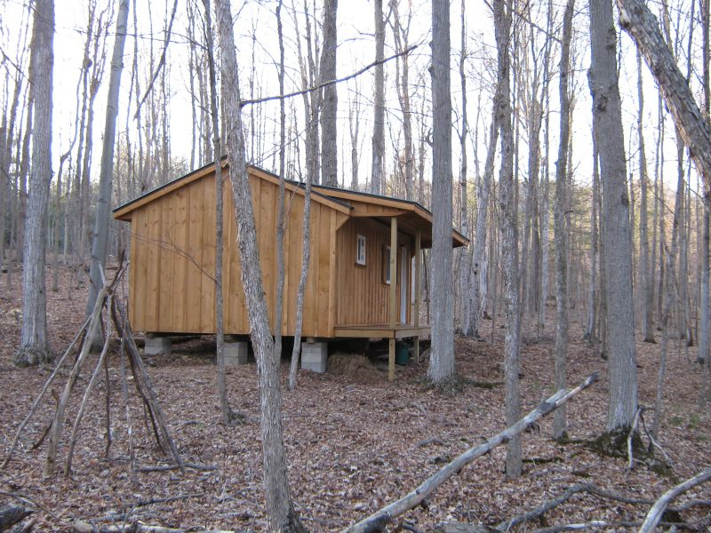 Board and batten to stain or not to stain small cabin forum for Board and batten cabin plans