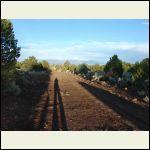 Moon Tree Trail  off hwy 285
