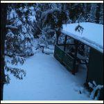 cabin-in-winter