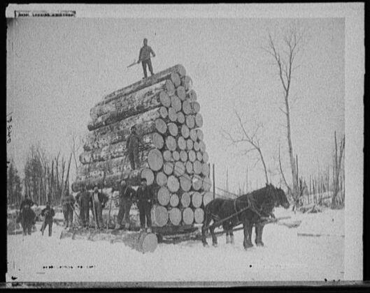 Antique Logging Pictures Arboristsite Com