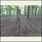 a teepee beginning?