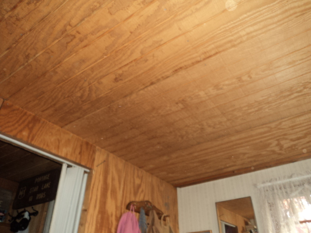 Plywood For Interior Paneling Or Other Cheap Options