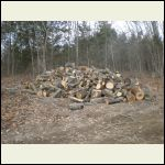 A Year's Supply of Firewood