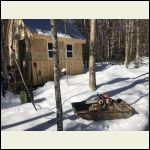 The sled