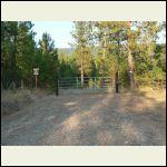 new gate to back twenty