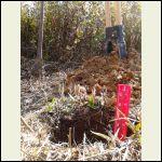 First hole dug