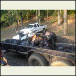 1 of 4 trailers of trash we hauled off!