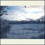 2813___snowy_night.jpg