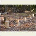 Cutting the Stumps Level