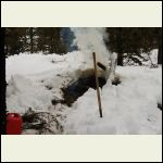 Burning slash piles