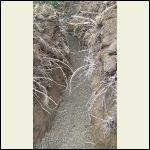 West Trench w/ gravel