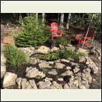 pond and rock garden