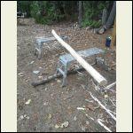 log for the pillar