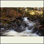 ruisseau5D224105..jpg