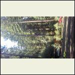 0322201150_HDR.jpg